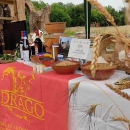 Archeofest 2021 Giugno stand Drago